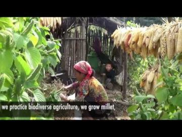 Securing livelihood
